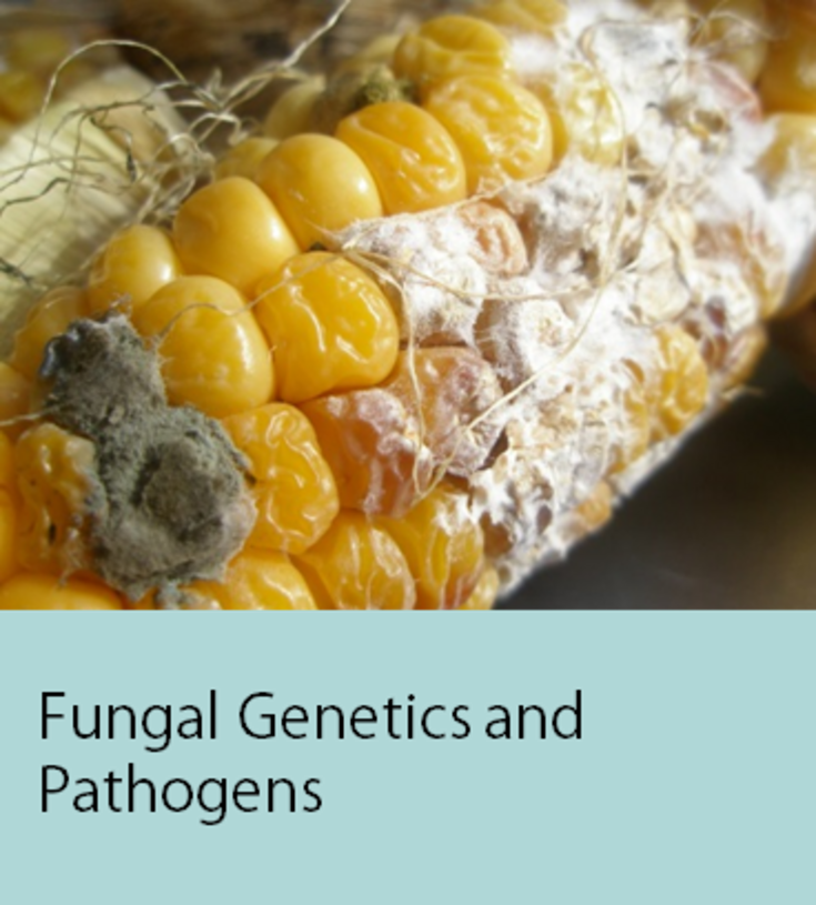 Fungal Genetics and Pathogens