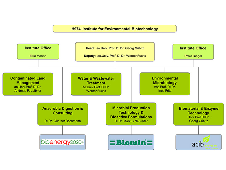 Organisation chart of the Institute of Environmental Biotechnology